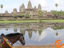 کامبوج-آنگکور-وات-3