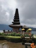 Indonezja - Bali sowy