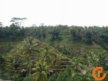 Indonesien-Bali-2